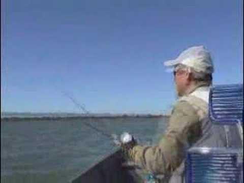 Programa de pesca - Ayrton pesca - Piapara - Veja mais! www.videospesca.com.br