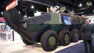 Review ACV 1.1 Amphibious Combat Vehicle BAE Systems and IVECO for U.S. Marine Corps