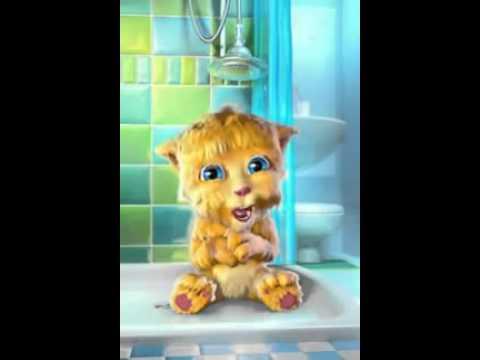 Talking Tom Cat - Punjabi Billi Very Funny Video.mp4 video