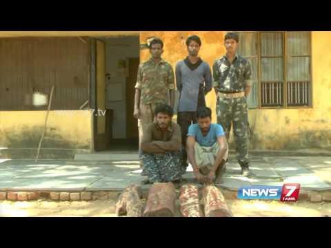 Tirupati police arrests 2 Tamil people for smuggling redwoods | News7 Tamil
