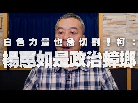 電廣-董智森時間 20191206 小董真心話-白色力量也急切割!柯:「楊蕙如是政治蟑螂」