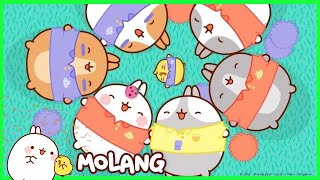 Molang - A Friendly Rugby Game | Cartoon for kids