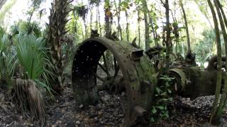 Finding an Old Tractor in The Woods