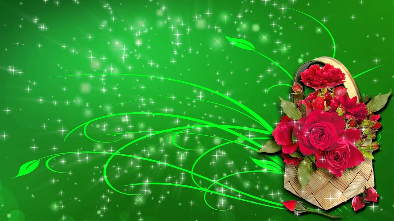 Видео поздравление на зеленом фоне хромакей