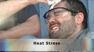 Heat Stress Safety Training Video