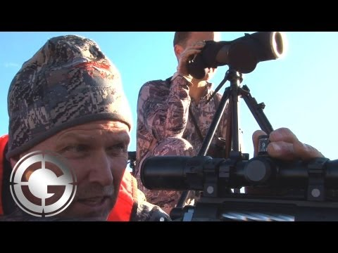Wyoming Elk at 1090 Yards Kill Shot - Long Range Hunting