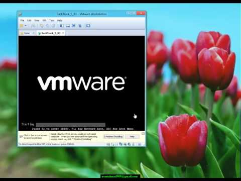 Install BackTrack 5R3 on VMWare Workstation 8 on Windows 8 RP