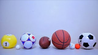 Learn Sport Ball Names for Toddler and Baby with Basketball Toy