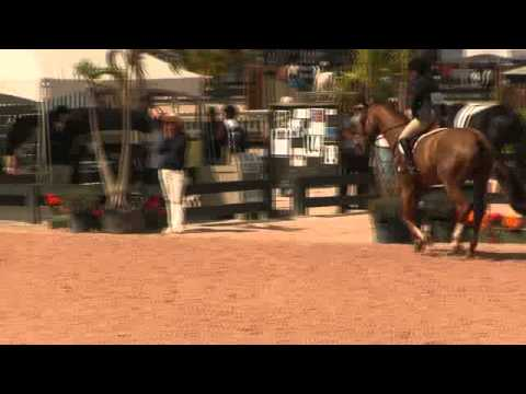 Video of COLLEGIATE ridden by ALEXANDRA BEAUMONT from ShowNet!