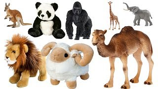 Learn Animals Names with Wild Toy Animals and Zoo Animal Toys for Kids | Fun Kids Tv