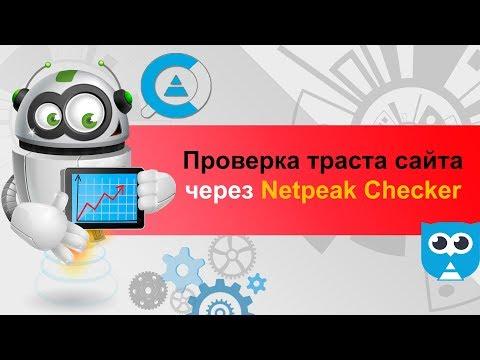 Netpeak Checker – проверка траста сайта и авторитетности сайта