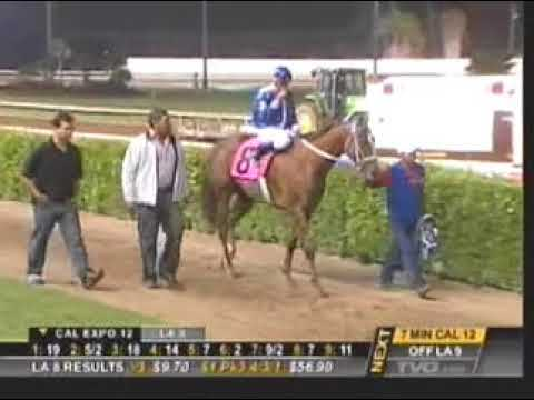 100 YARD STAKES RACE @ LOS ALAMITOS