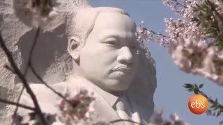 What's New -National Cherry Blossom Festival ( Washington Dc)