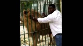 Eumeu Sène entrain de caresser un lion au parc de hann