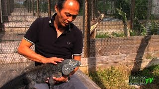 The Tremendous Ty Park and his Remarkable Reptile Farm - HerpersTV S2:Ep22