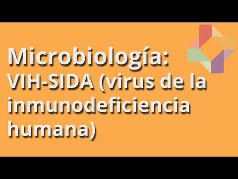 VIH-SIDA (virus de la inmunodeficiencia humana) - Microbiología - Educatina
