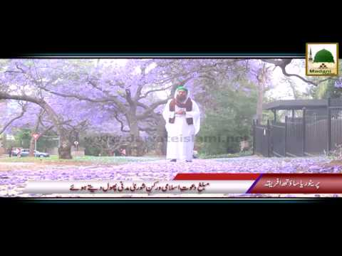 Package 06 - Pretoria South Africa Rukn-e-Shura Kay Madani Phool