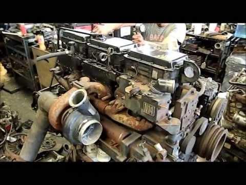 AMY AMY - Calibración de válvulas de un motor Ford a diesel