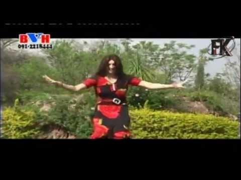 Song 3-zwani Dee Mazedara Zama Da Meeni-zaman Zaheer-asma Lata-'brothers Public Choice 3'.mp4 video