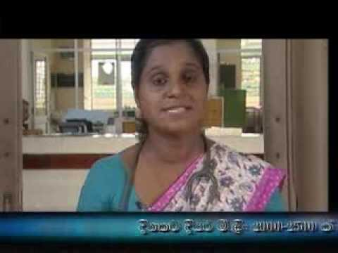 Education Of Dengue (in Sinhalese) video