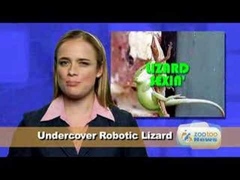 Funny Pet News #5- Lizard Sex, Dog Hulk, Pig Art