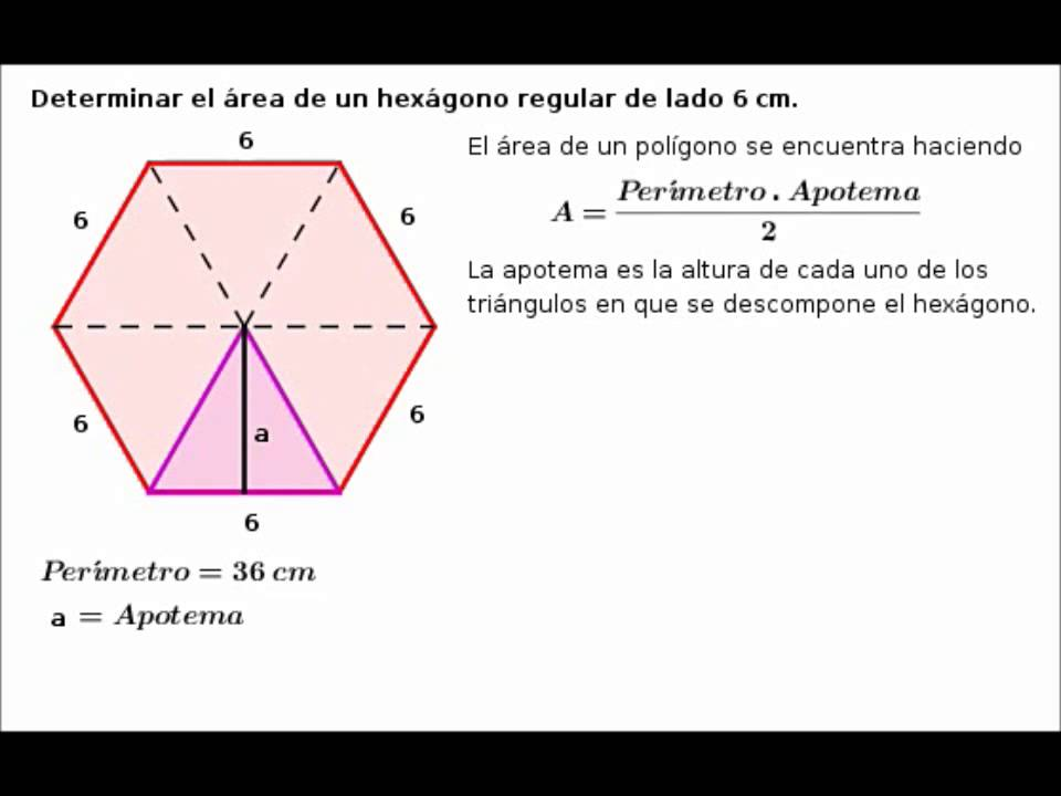 Per0edmetro del hex0e1gono regular