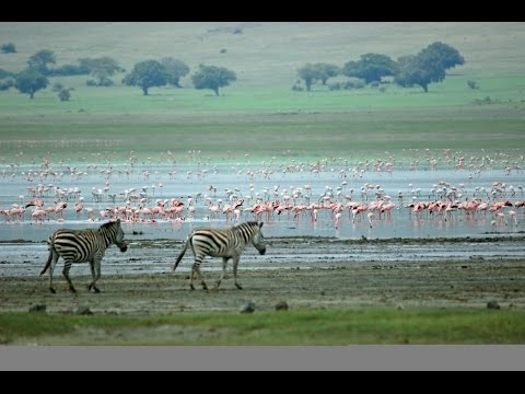 Tanzania: Top 10 Tourist Attractions - Video Travel Guide