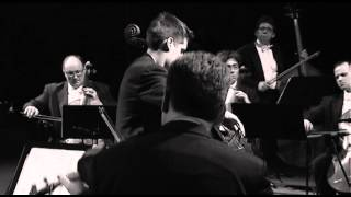 Luka Sulic - Theme from Schindler's List