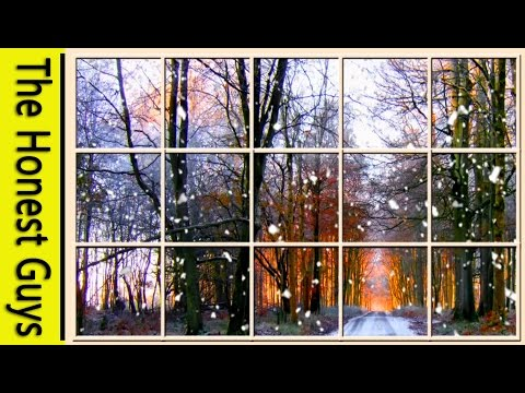 Winter Window Scene. Forest (living Wallpaper with Ambient Fireplace Audio)