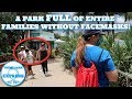 I'VE NEVER FELT SO UNSAFE AT A THEME PARK! SeaWorld Orlando Reopening! Everyone Ignores The Rules!