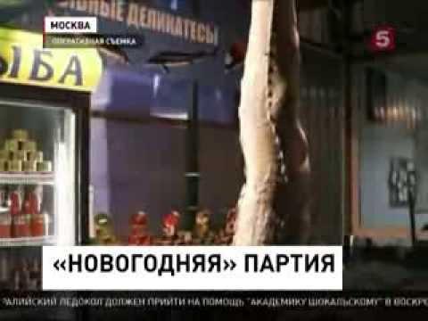 Черная икра, В Москве изъяли крупную партию осетрины, черной и красной икры