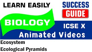 ICSE IX BIOLOGY Ecosystem-3- Ecological Pyramids by Success Guide
