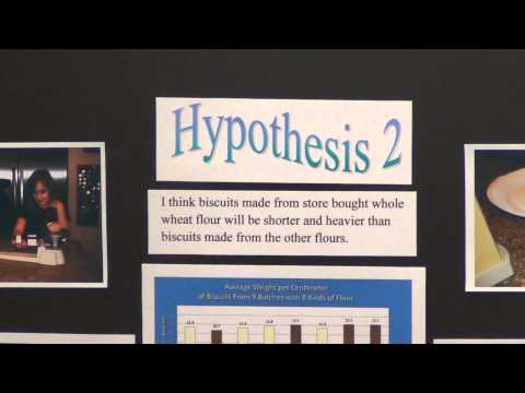 Science Project - 3. Research & Form a hypothesis
