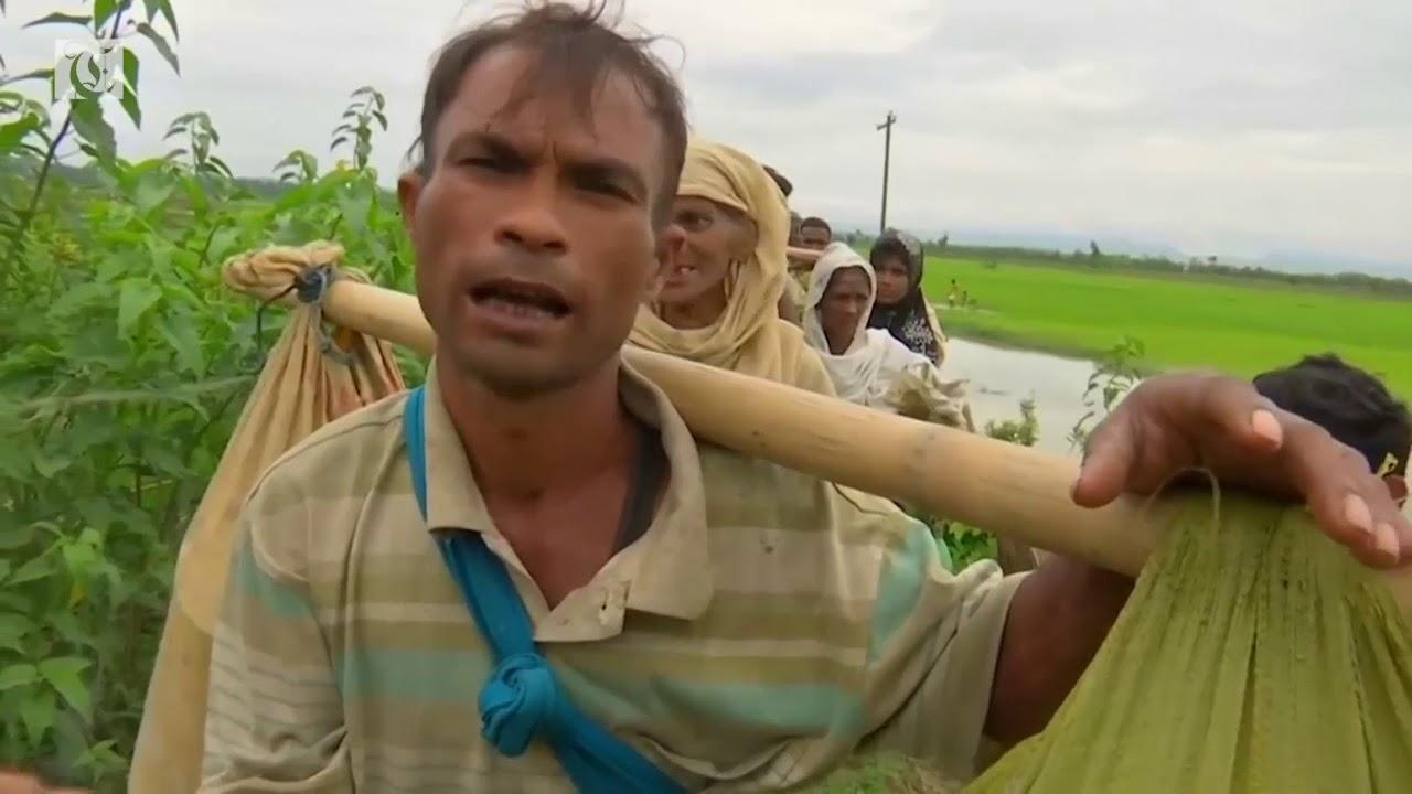 Exodus of Rohingya to Bangladesh tops quarter of a million