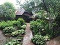 Моя дача в июне / обзор сада , огорода и теплиц / после сильной засухи похолодание и дожди