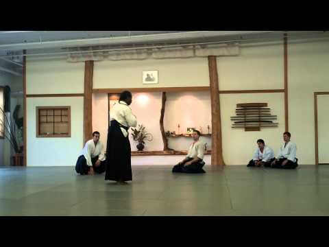 HD - Aikido Shihan Donovan Waite Sensei - 2011 USA, Burlington - Randori Explained Image 1