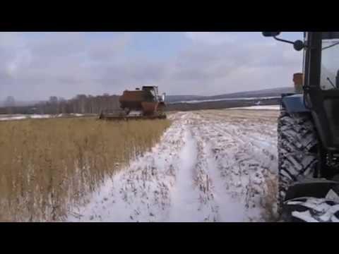 Уборка зерна по снегу 2014