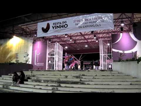 Festa do Vinho 2013 no Cartaxo (HD)