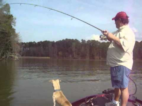 Fishing Lake Guntersville . com # 8