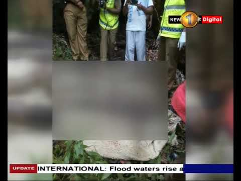 2 bodies discovered |eng