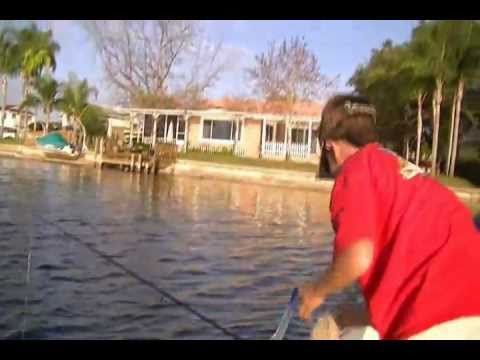 BiteBackFishing/Fishing For LadyFish