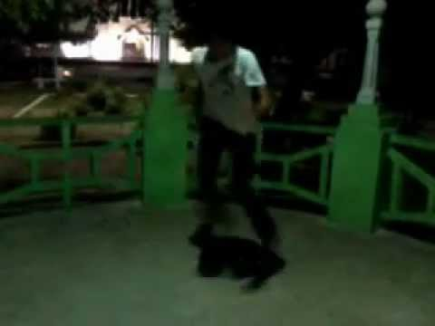 Dual Mix Dance Free Step.wmv video