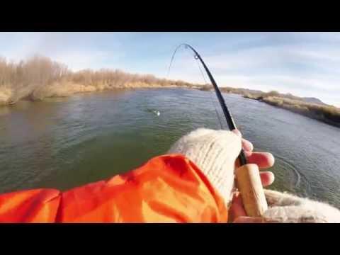 рыбалка на реке онон зимния