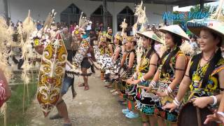 Download Lagu VIDEO Penyambutan Tamu Khas Suku Dayak Kenyah Gratis STAFABAND