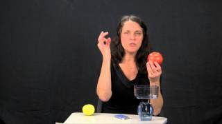 Sherri Shafer, Registered Dietitian, Diabetes Management Part 1: Carbohydrate Counting