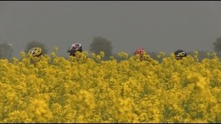 """Bande-annonce du documentaire """"Riders in the Somme"""" (VF)"""