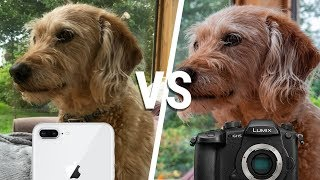 iPhone Camera VS $3000 PROFESSIONAL Video Camera - Can you tell the difference?