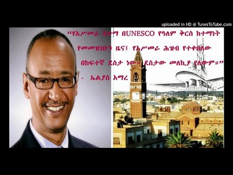 Interview With Journalist Elias Amare - SBS Amharic