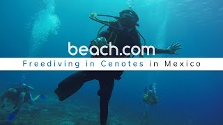 Freediving in Cenotes in Mexico! (Playa Del Carmen, Cozumel, & Tulum)