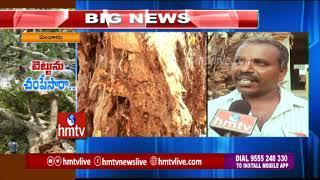 200 Years Old Banyan Tree Collapsed In Eluru | hmtv